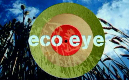 School featured on Eco Eye